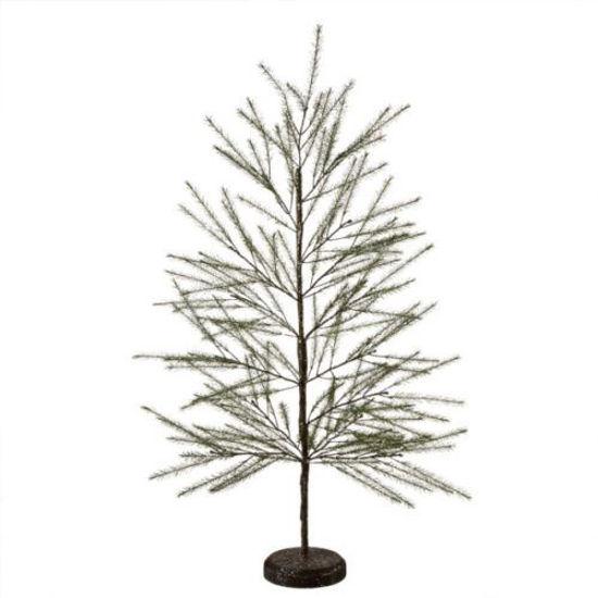Fir Pine Tree  by Midwest-CBK