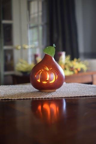 Pumpkin Silhouette by Meadowbrooke Gourds