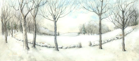 Paper Insert for Display Box - Winter by Willy Petersen