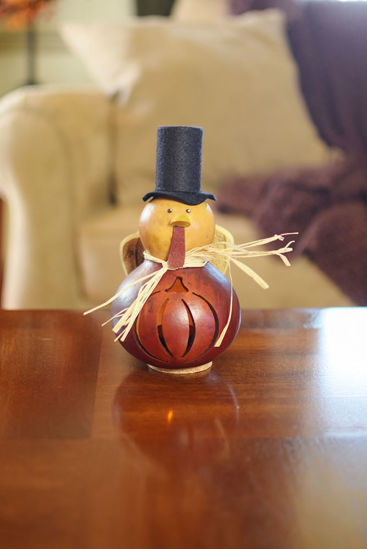 Theodore Miniature by Meadowbrooke Gourds