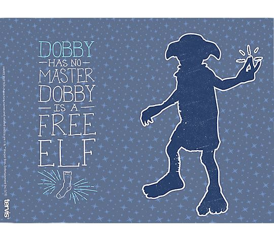 Harry Potter™ - Dobby Free Elf 16oz. Tumbler by Tervis