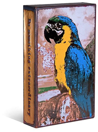 Parrot Spiritile by Houston Llew