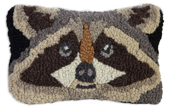 Raccoon by Chandler 4 Corners