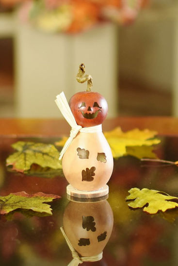 Lil Dexter by Meadowbrooke Gourds