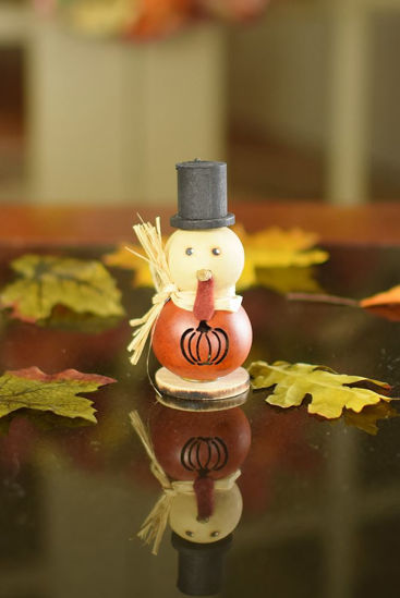 Lil Theodore Short Orange by Meadowbrooke Gourds