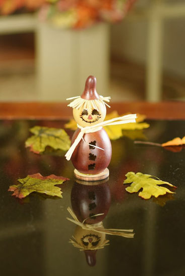 Lil Warehime by Meadowbrooke Gourds