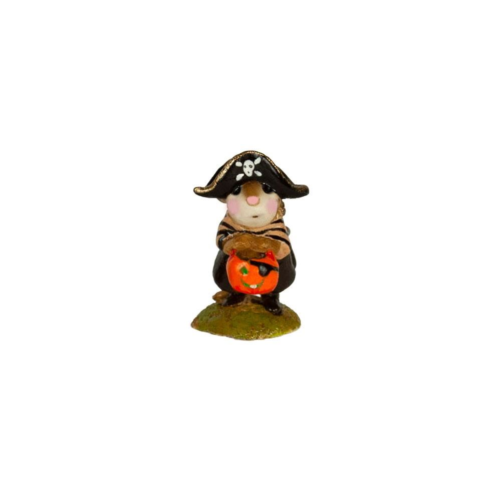 Mini Little Pirate Kidd M-216m By Wee Forest Folk®