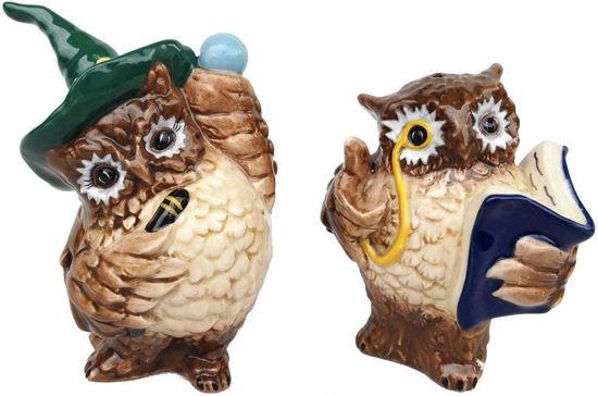 Owl Salt and Pepper Set by Blue Sky Clayworks