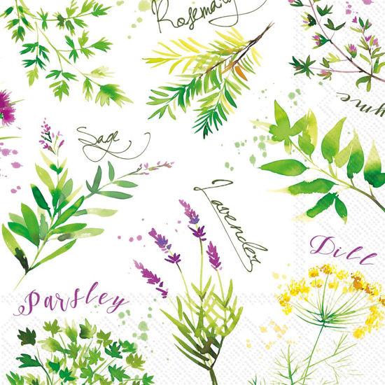 Soft Herbs Luncheon Napkin by Boston International