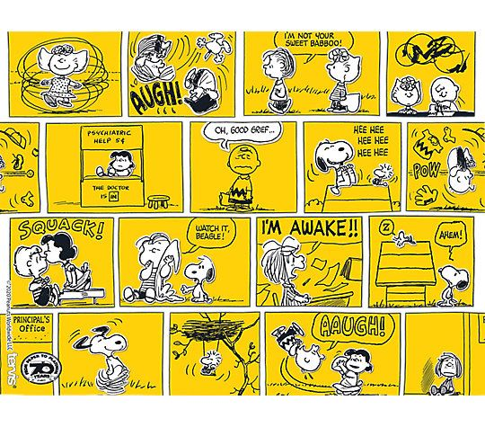 Peanuts™ - 70th Comic Strip 24oz.Tumbler by Tervis