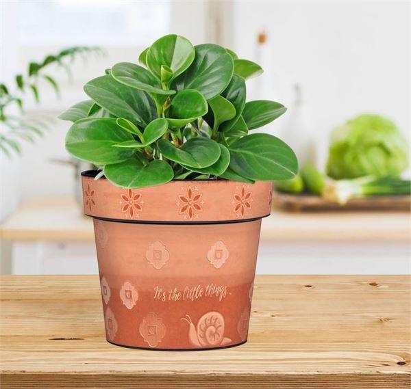 "Terra Flora 6"" Art Pot by Studio M"