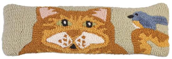 Orange Cat by Chandler 4 Corners
