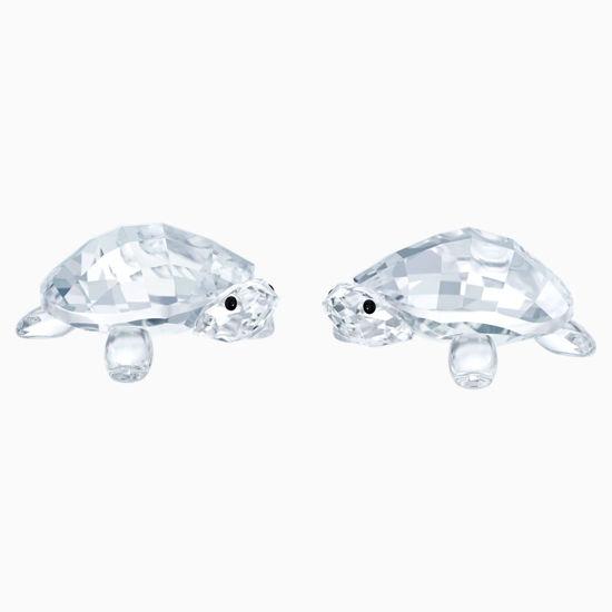 Baby Tortoises by Swarovski