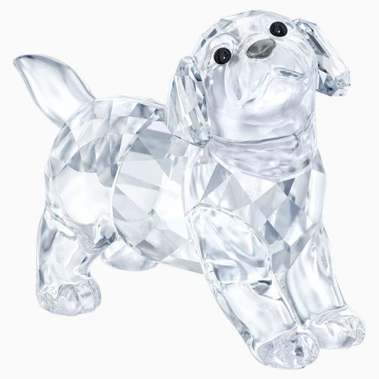 Labrador Puppy, Standing by Swarovski