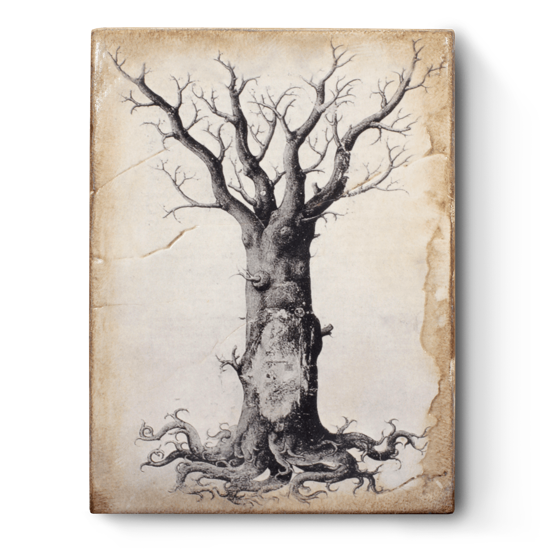 Medieval Tree of Life by Sid Dickens