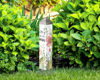 "Joy Dwells Here 20"" Art Pole by Studio M"