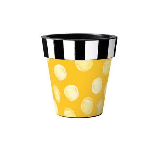 "Pop of Yellow 12"" Art Planter by Studio M"