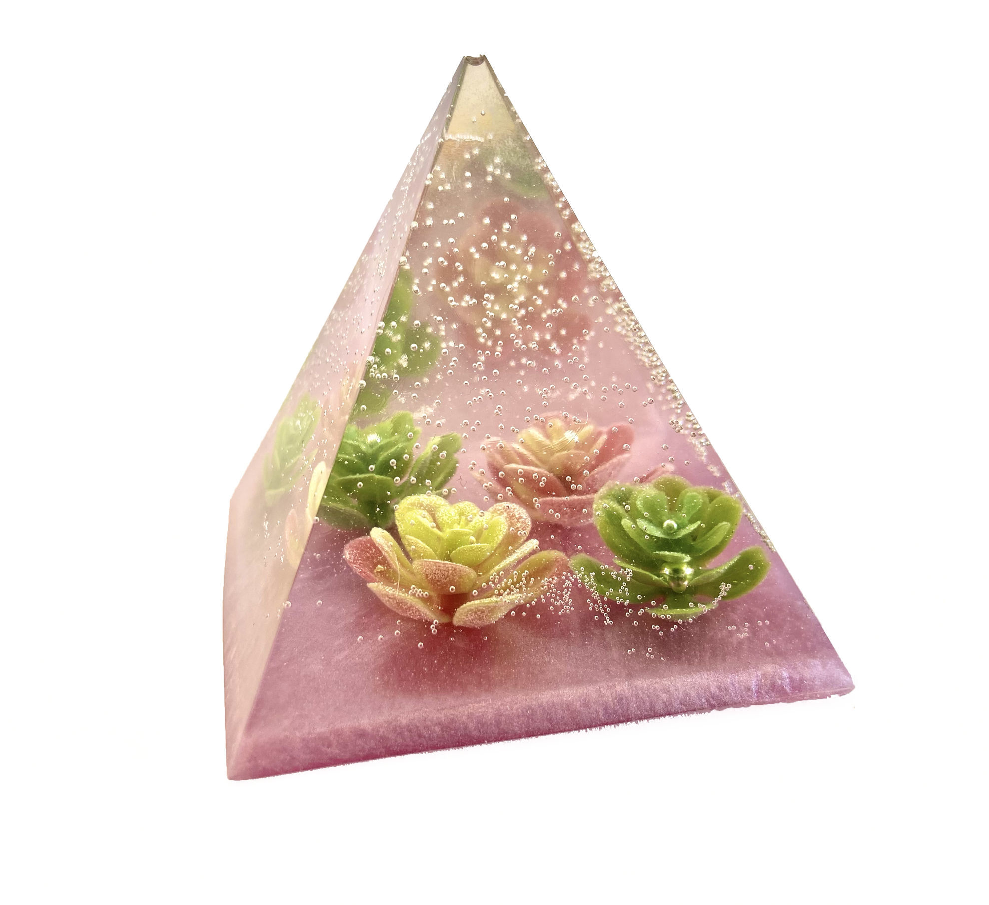 Succulent Small Pyramid by Spirited Pyramids