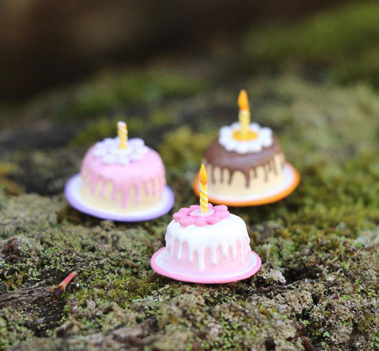 Tiny Birthday Cake 016 (Assorted) By Wee Forest Folk®