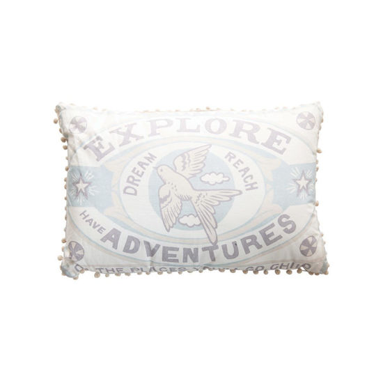 Explore Pillow by Creative Co-op