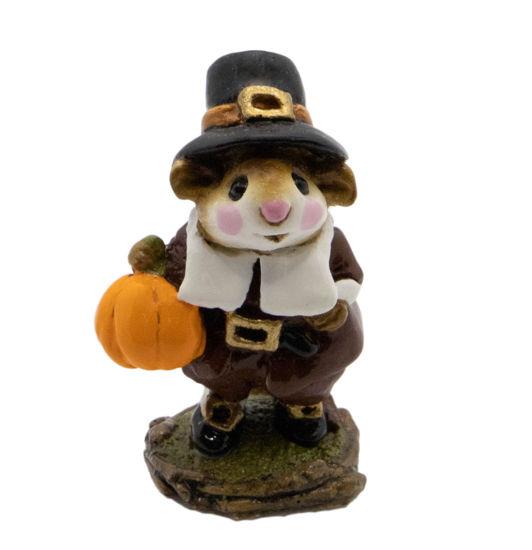Peter's Pumpkin M-118 by Wee Forest Folk®