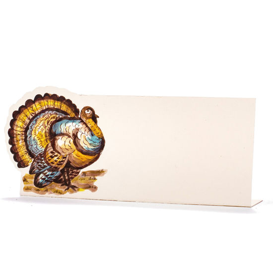 Thanksgiving Turkey Place Card by Hester & Cook