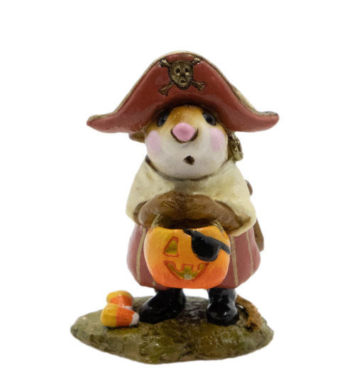 Little Pirate Kidd M-216 (Cream/Pink Special) by Wee Forest Folk®