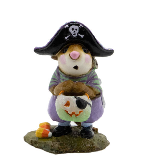 Little Pirate Kidd M-216 (Green/Lavender Special) by Wee Forest Folk®