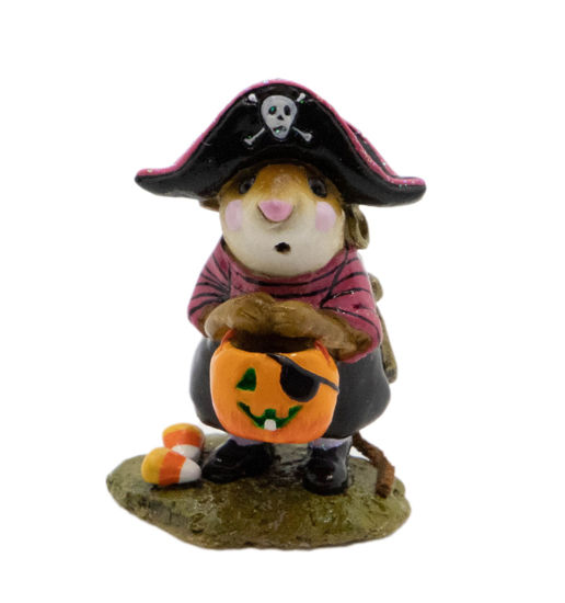 Little Pirate Kidd M-216 (Black/Pink Special) by Wee Forest Folk®