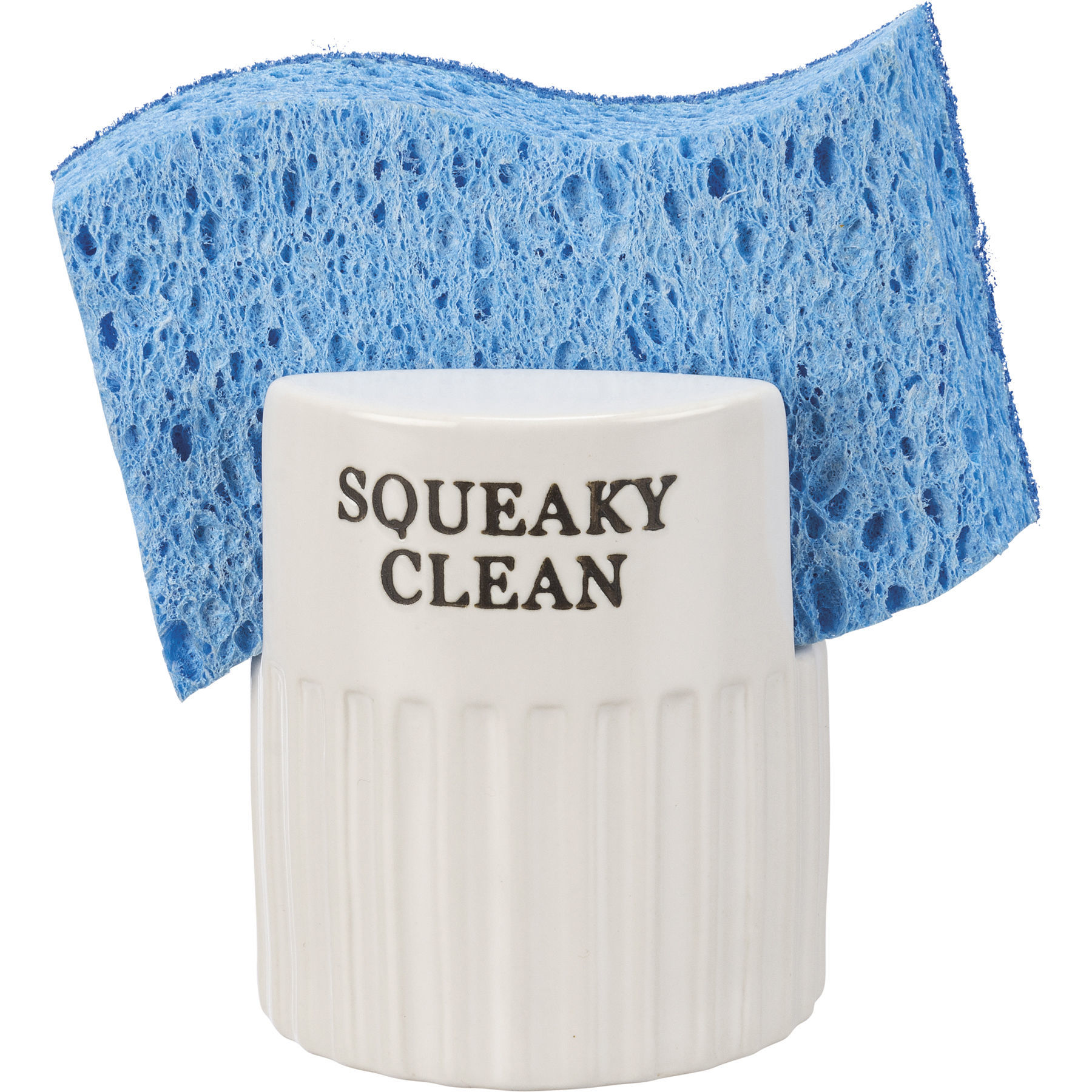 Sponge Holder - Squeaky Clean by Primitives by Kathy
