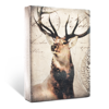 King of the Forest by Sid Dickens