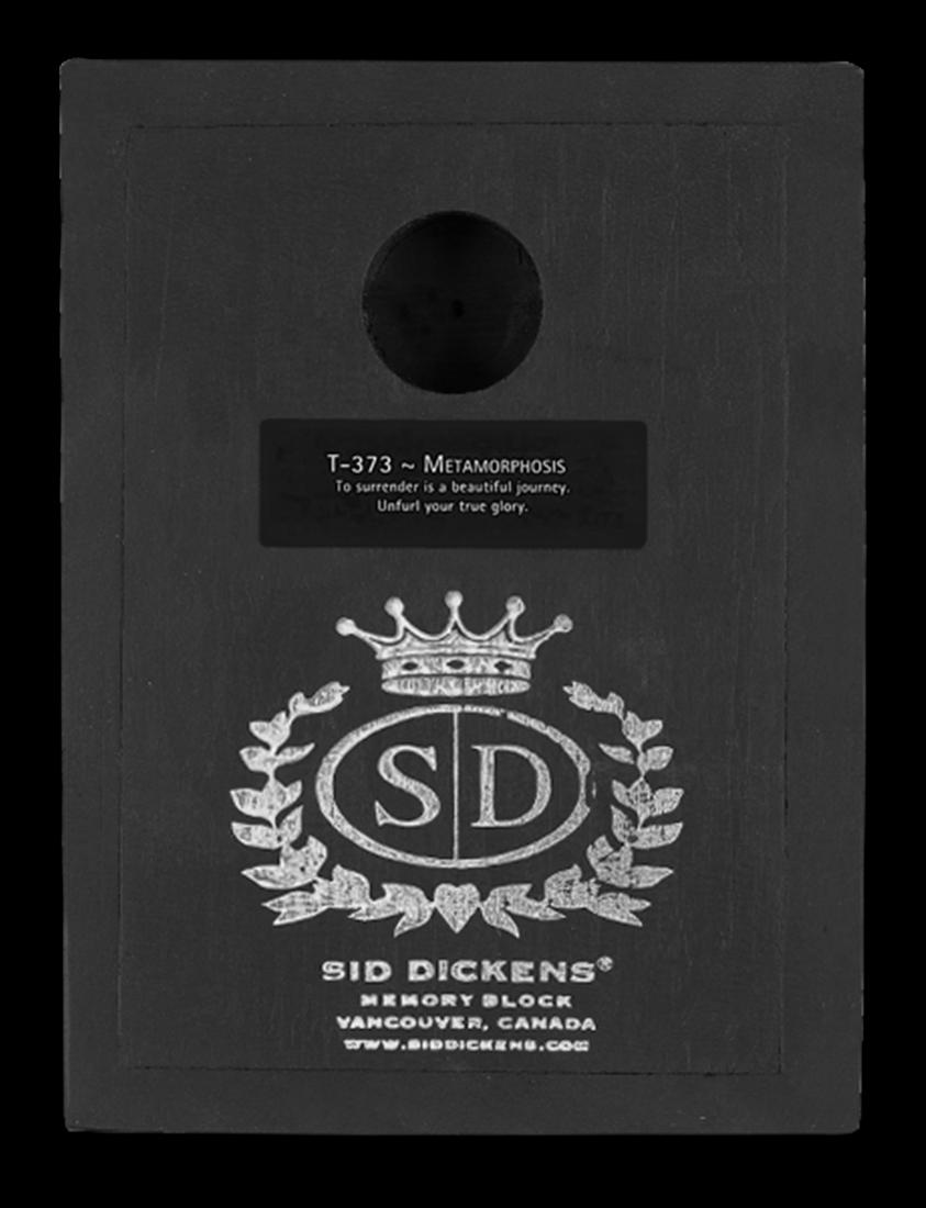 Metamorphosis by Sid Dickens